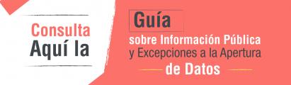 Guía sobre Información Pública y Excepciones a la Apertura de Datos